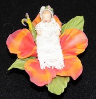 Hibiscus Flower Holding 1/2 sc. Baby